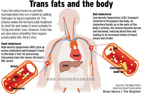 trans-fat-info