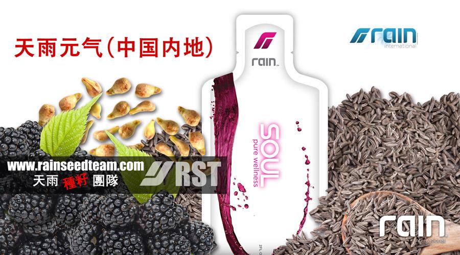 RainSoul-China
